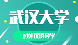 武汉大学-对外汉语导学