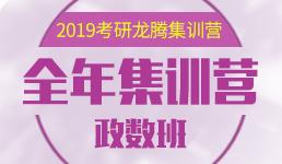 2019考研全年集训营-政数班