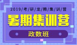 2019考研暑期强化营-政数班