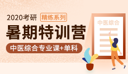 2020考研暑期营—中综专业课+单科