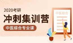 2020考研冲刺集训营-中医综合专业课